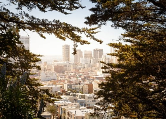 Ways to Reduce your Carbon Footprint - City through the Trees