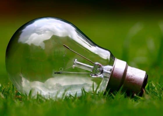 Glass light bulb on grass
